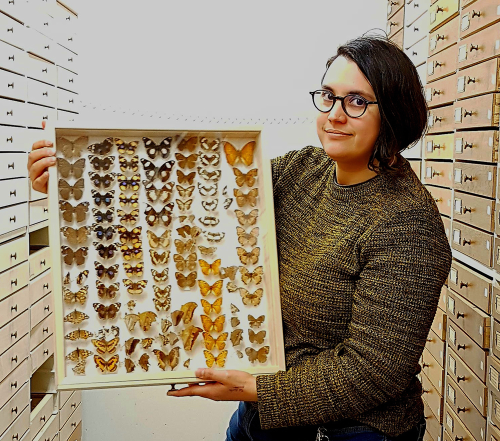 "Shades of Jurassic Park: Museum Specimens Shown to be ""Treasure Troves"" of Genomic Data"