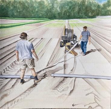 fieldwork art