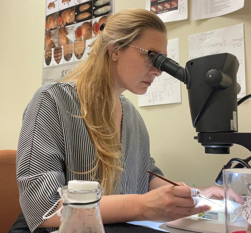 Amelia Lindsey, Ph.D.