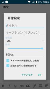 06_image_option