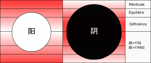 Excès de yin