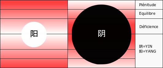 Excès de yin déficience de yang
