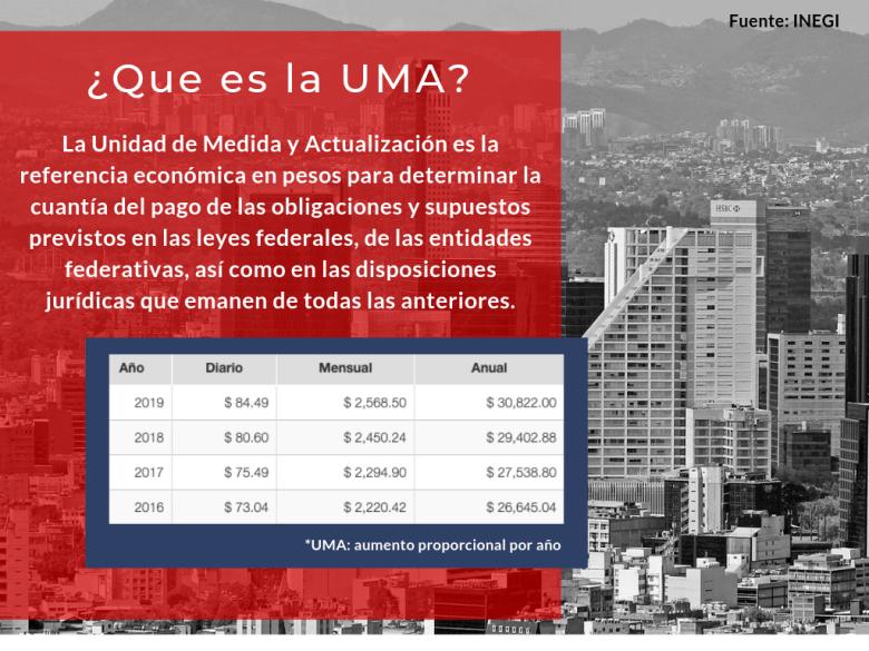 ¿Que son las UMAs_ (1).png