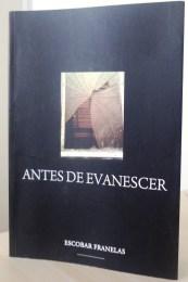 E-mail com considerações sobre Antes de Evanescer