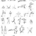 flexibilidad en el futbol