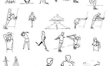 Guia: 4 capacidades fisicas basicas-La Flexibilidad