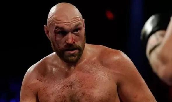 combate boxeo fury wallin pesos pesados, noticias de boxeo corte en la ceja de tyson fury, victoria, boxeadores