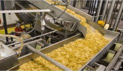 potato chips production business