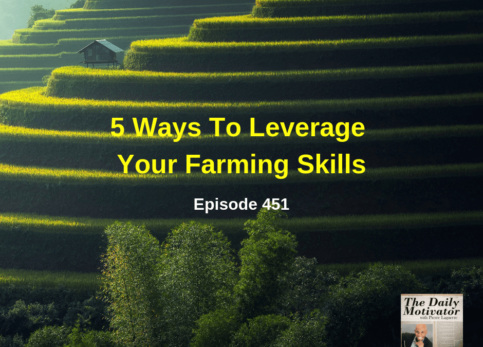5 Ways To Leverage Your Farming Skills. Episode #451