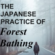 The Japense Practice of Forest Bathing  |  Natural Healing