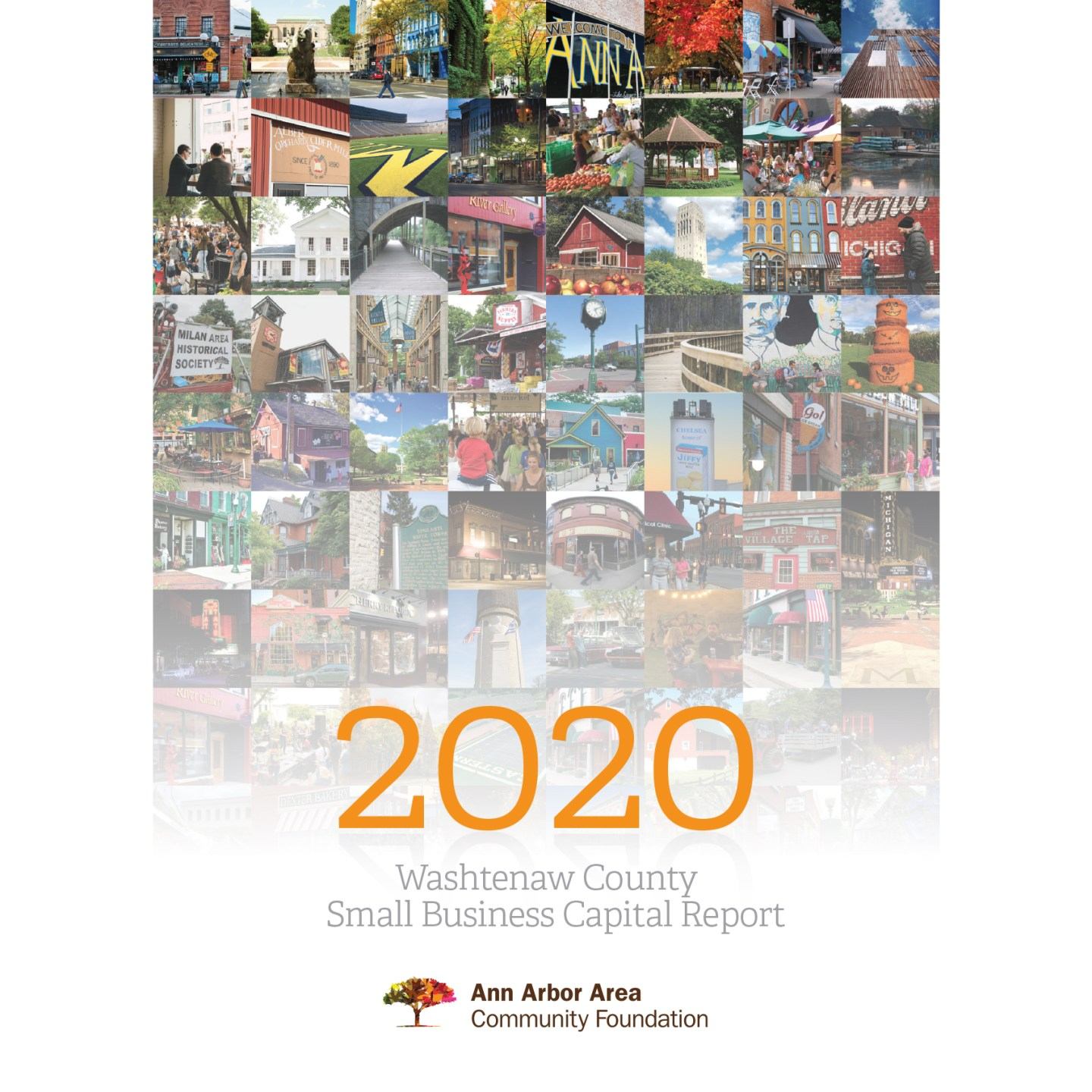 sq cover graphic - 2020 Washtenaw County Small Business Capital Report - final version from EntryPoint