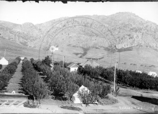 Orchard at Colorado Chautauqua in Boulder, circa 1907. Photo credit: Boulder Historical Society/Museum of Boulder, on permanent loan to the Carnegie Library for Local History.