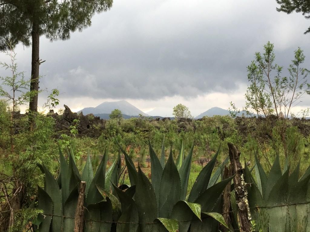Rainy day at Parícutin Volcano