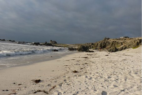 Mejores playas de Chile Punta Choros