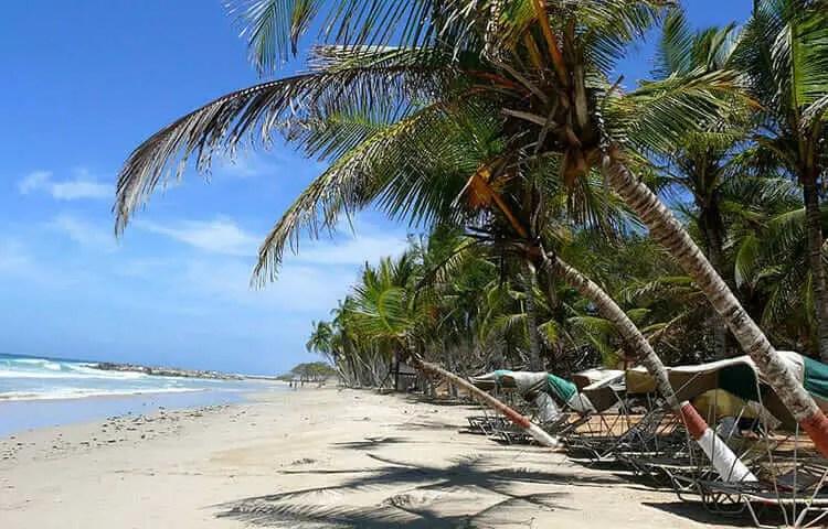 Playas de Margarita Playa Guacuco