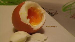 Huevos cocidos y pasados