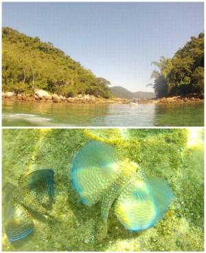 lagoa-verde-ilha-grande