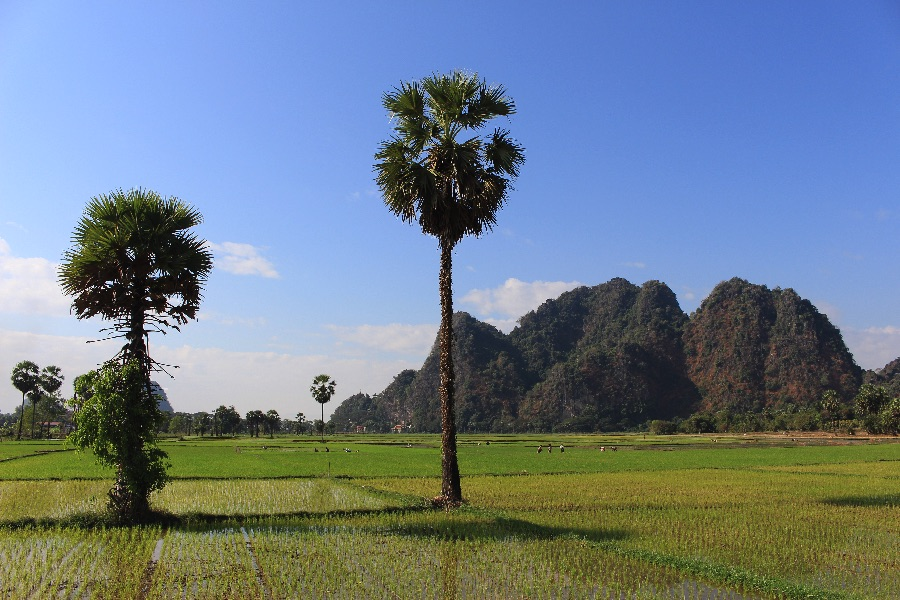 Les environs de Hpa-An, c'est (très) beau!