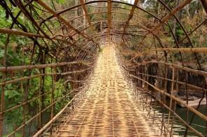 Camille était pas rassurée sur ce pont en bambou!
