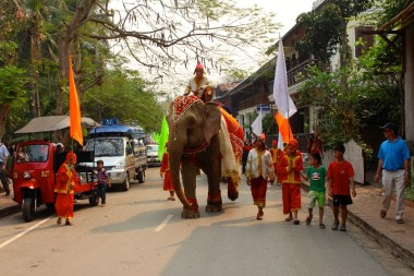 defile-elephants-luang-prabang
