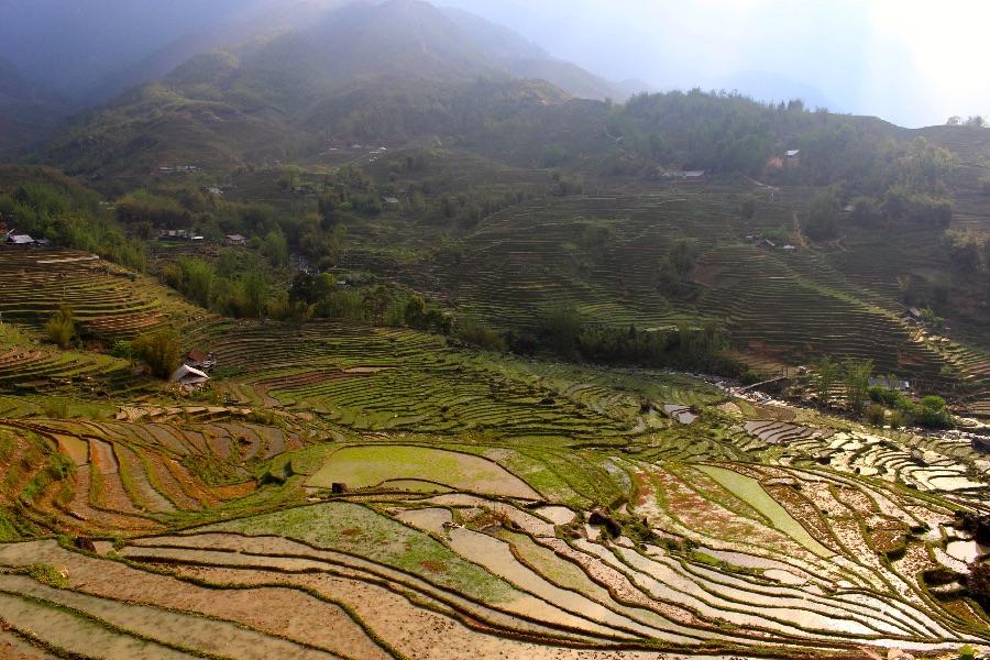 paysage-rizieres-terasses-sapa