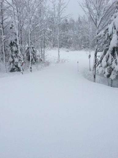 hiver22016
