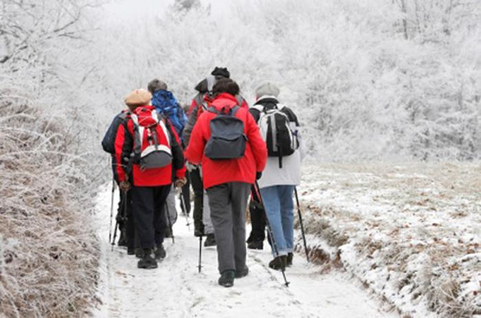 Marche en hiver