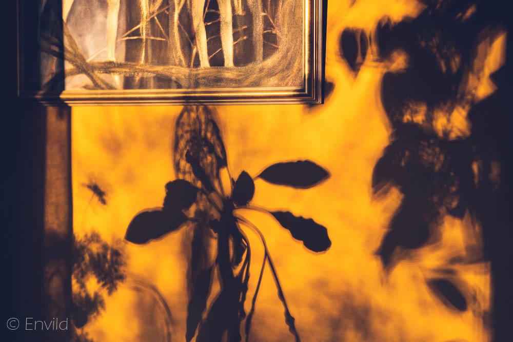 Kan man sakna drama när det mest dramatiska är ljuset på hallväggen? Ockragul vägg med skuggor från solljus.