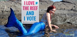 I love the reef and I vote