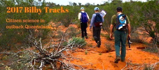 Bilby Tracks 2017