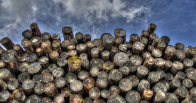 Source: http://maxpixel.freegreatpicture.com/Wood-Logging-Logs-Woodpile-Timber-Forestry-Lumber-498538