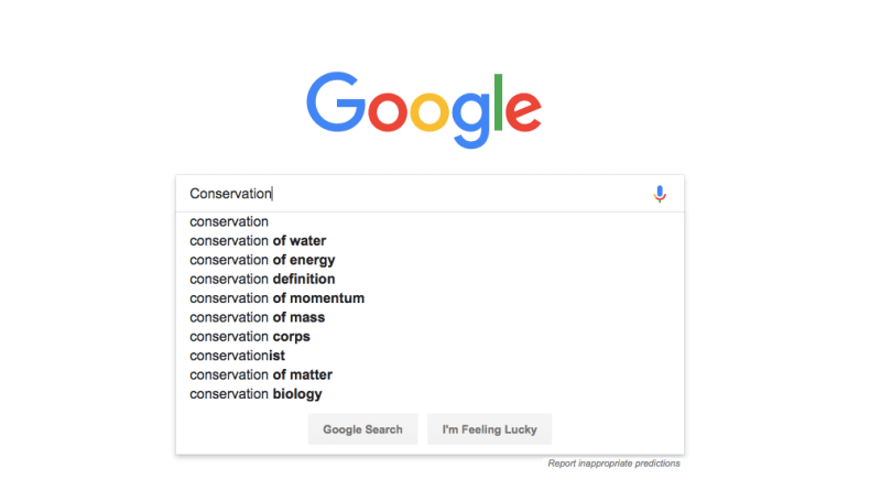 Screenshot of a google search for the word conservation