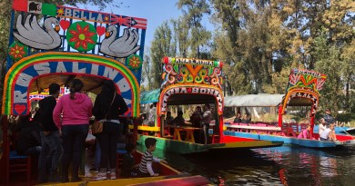 Colorful boats on a canal in Xochimilco wetlands.