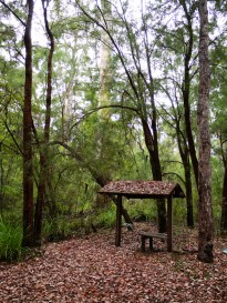 Shannon National Park, Northcliffe