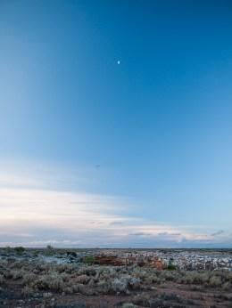 Nuytsland Nature Reserve