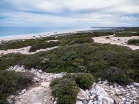 Great Australian Bight Marine Reserve, South Australia