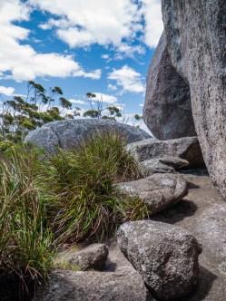 Walk Trail up to Castle Rock, Porongurup National Park