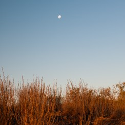 Moon Rise over the Flinders Ranges, South Australia