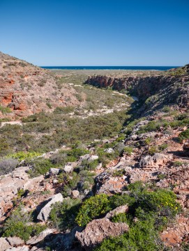 Mandu Mandu Gorge, Cape Range National Park, Western Australia