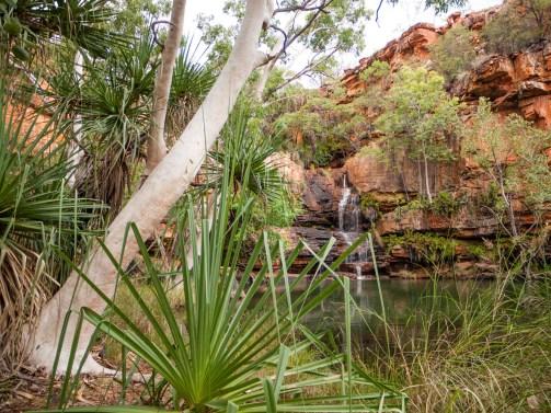 Galvans Gorge, Gibb River Road, Kimberleys, Western Australia
