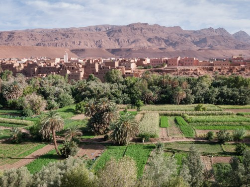 Fertile valleys near Todra Gorge, Morocco