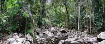 River Downstream from Minyon Falls, Nightcap National Park