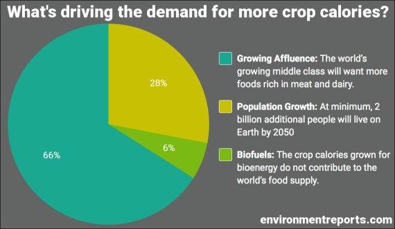 crop calorie demand drivers