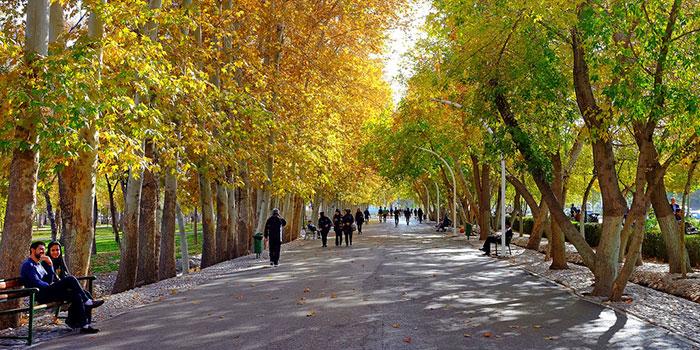a shaded walkway combining urban and natural environments