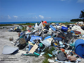 Trash on Midway Island, Plastic Paradise LLC