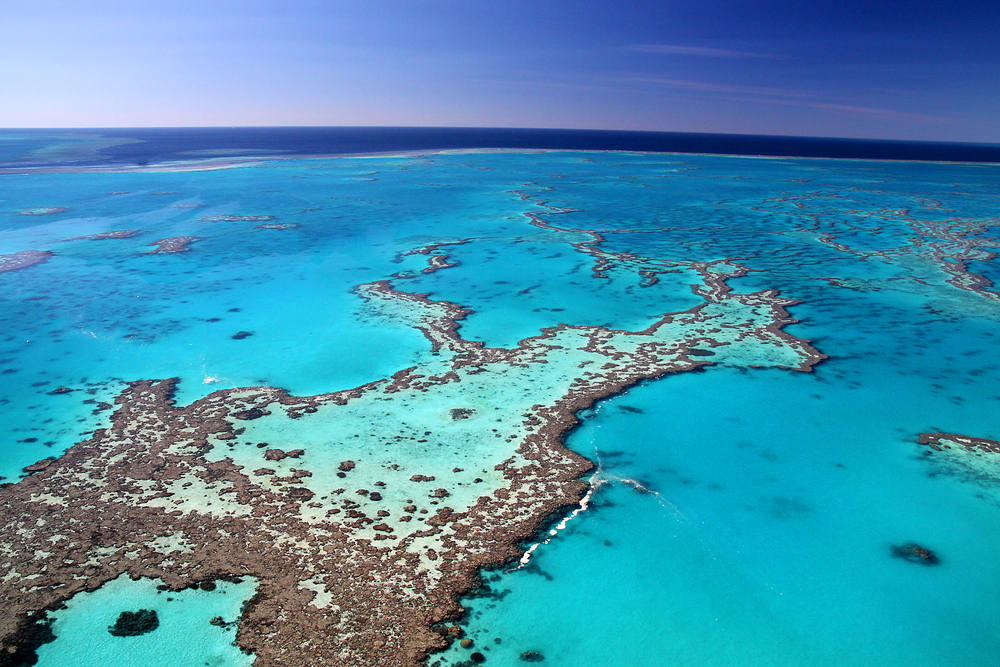 Coal Project May Harm Great Barrier Reef