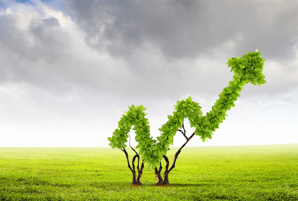 The Business World Starts to See that Green is Good