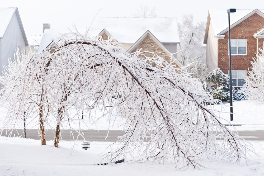 Will Climate Change Bring More Severe Ice Storms?