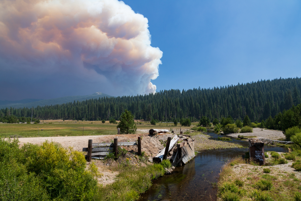 Dixie Fire Destroyed 1,200 Buildings, 550 Homes