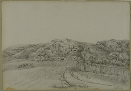 Figure 6: Valpy, Forbury Farm, circa 1857, pencil on paper, Valpy Box 3, Acc No: 1978/5684, Reproduced with permission of Toitū Otago Settlers Museum, Dunedin.